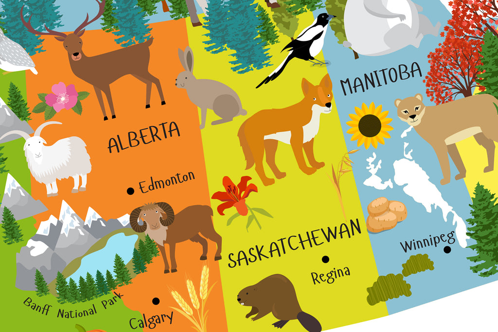 Printable Canada Map for Kids Instant Download Pictureta