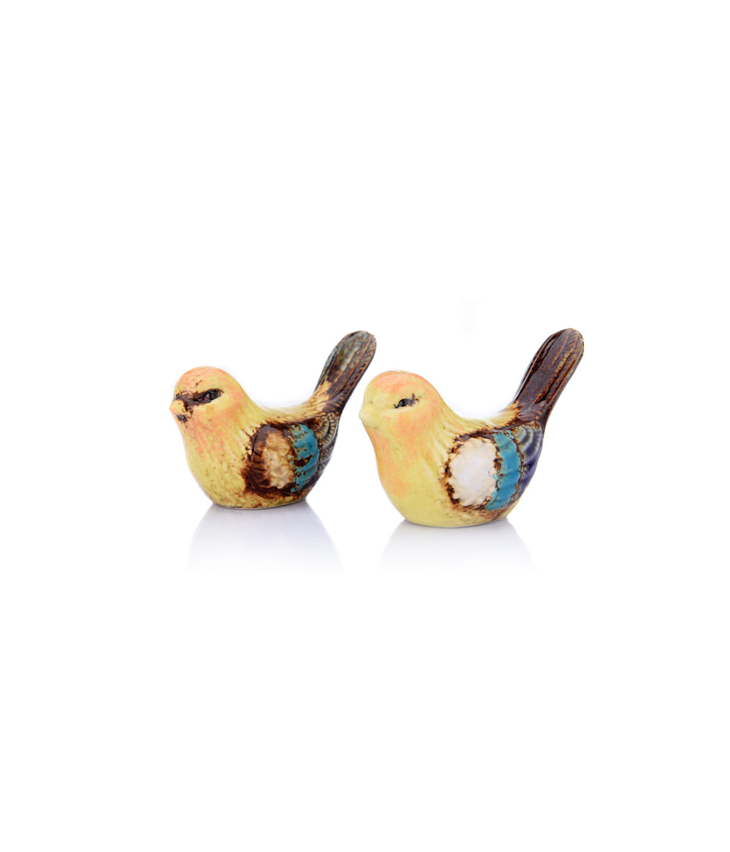 Bird Salt &Pepper