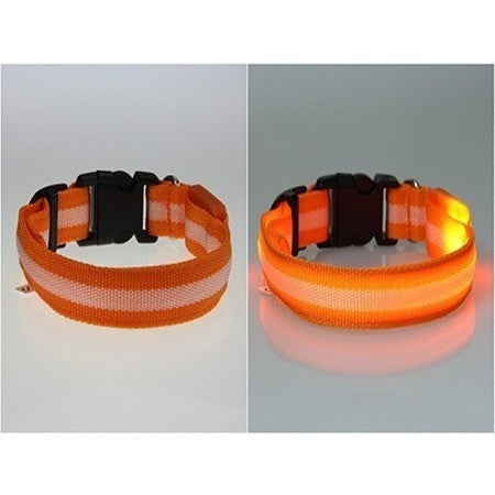 LED Glow Nylon Dog Safety Light Collar-Pet Stuff-Alpsy Group