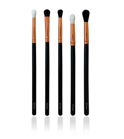 Elite Eye Brush Set
