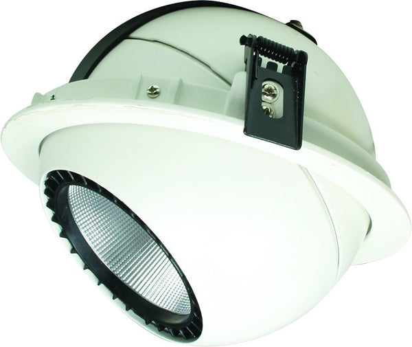 230VAC 30W COOL WHITE ADJ. RECESSED LED DOWN LIGHT 4000k