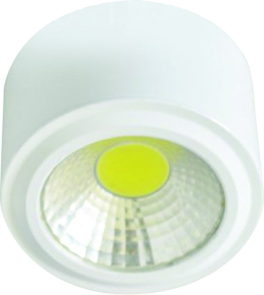 100-240VAC 20W, WARM WHITE, WHITE LED SURFACE MOUNT (Ø115x14