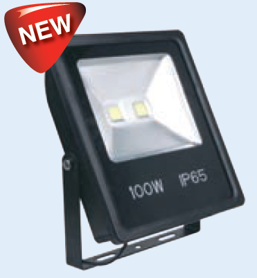 85-265VAC 100W COOL WHITE LED ALUM. FLOOD LIGHT IP65
