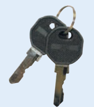 SPARE KEYS FOR MS101-1-1 LOCK