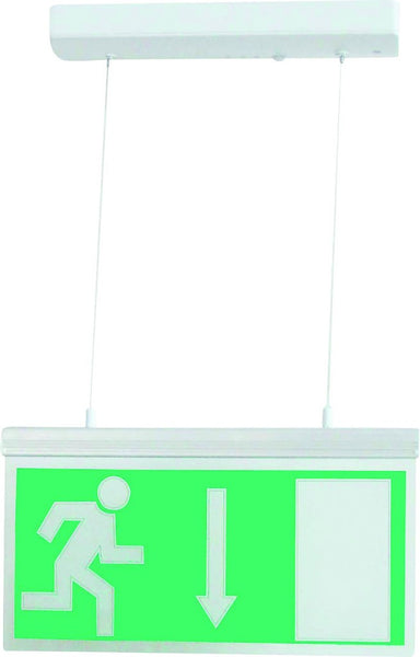 EMERGENCY LIGHT ALUMINIUM 11xLED MAINTAINED CEILING MOUNT