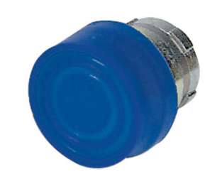 BLUE BOOTED PUSHBUTTON HEAD