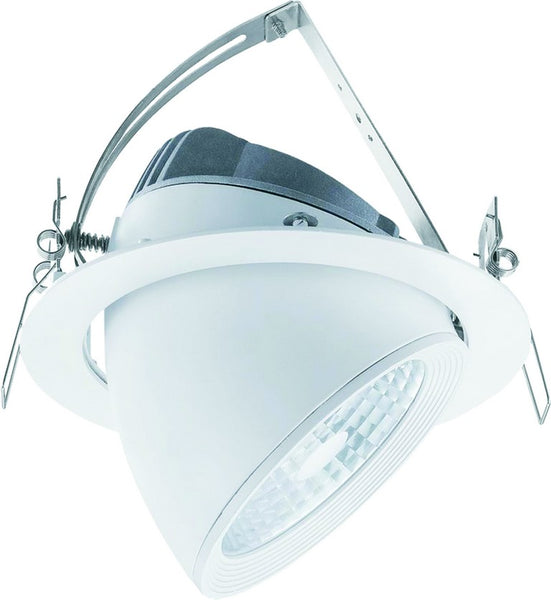230VAC,30W,ADJUSTABLE LED SPOTLIGHT,COOL WHITE,Ø188x150