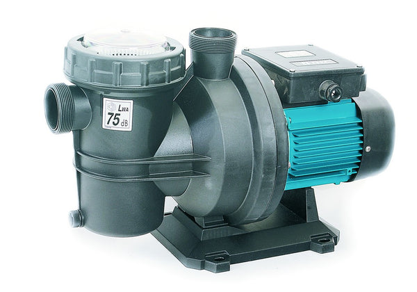 230V .75HP/.55kW SW POOL PUMP & MOTOR