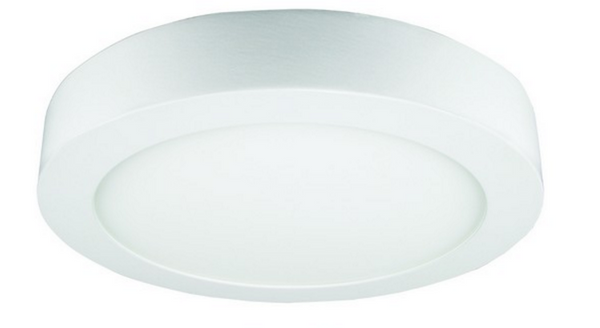 85-265VAC,12W,COOL WHITE,ROUND,SURFACE MOUNT LED,170X35mm