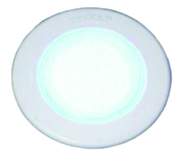 Ø220X60MM BLUE POOL LIGHT 12VAC,100LED,25W,0.75A