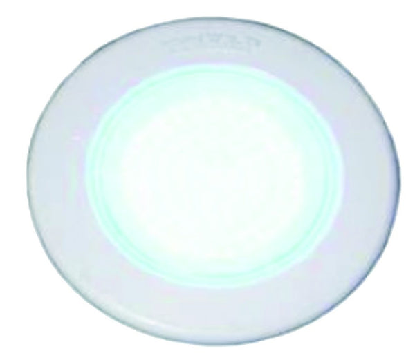 Ø220X60MM WHITE POOL LIGHT 12VAC,100LED,25W,0.75A
