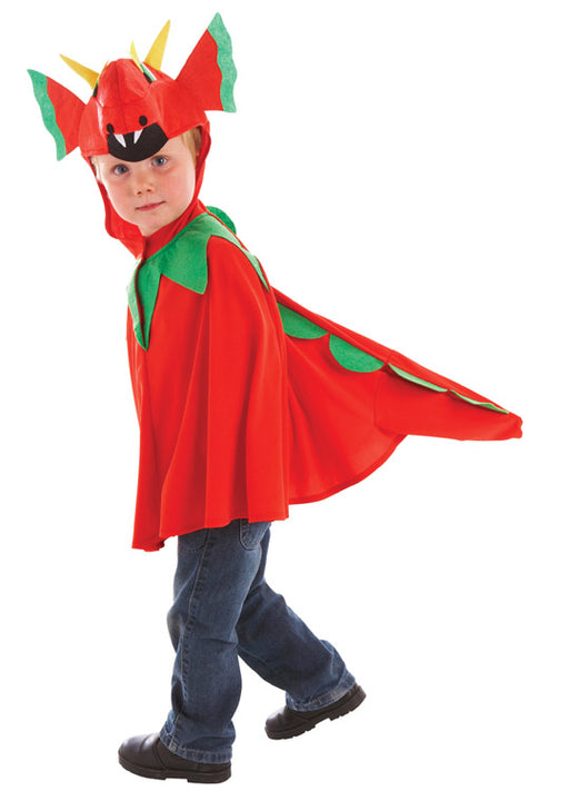 Friendly Dragon Costume Child