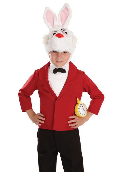 Mister Rabbit Costume Child