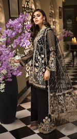 Anaya La Belle Soiree suit NORA - Embroidered organza shirt with net dupatta