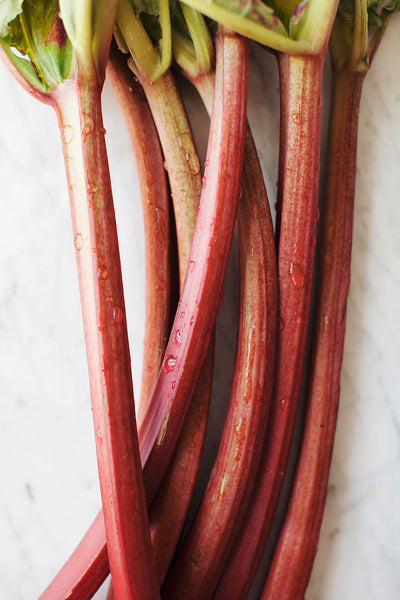 Rhubarb Light