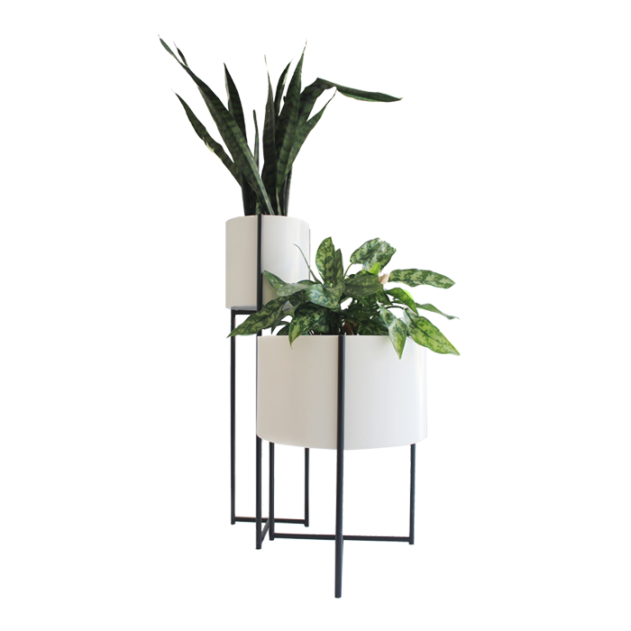 Oliver Planters by Evie Group