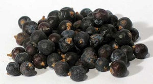 Juniper Berries Whole 2oz (Juniperus communis)