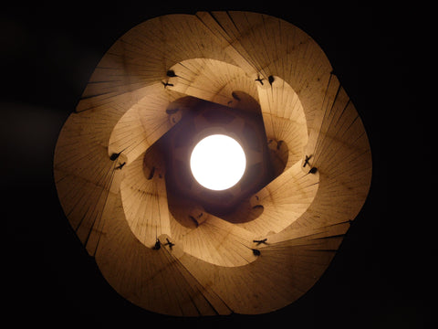 Bloom Lamp | Luminária pendente - cortesia