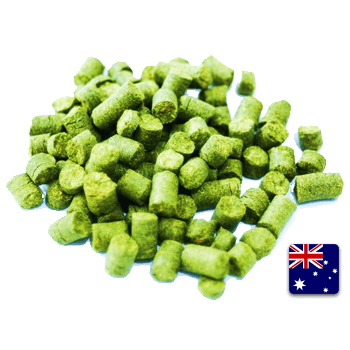 Galaxy Pellet Hops (1 oz) - Toronto Brewing