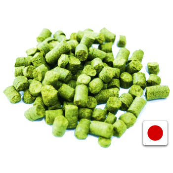 Sorachi Ace Pellet Hops (1 oz) - Toronto Brewing