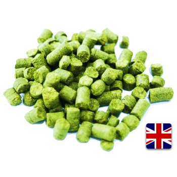 UK East Kent Golding (EKG) Pellet Hops (1 oz) - Toronto Brewing