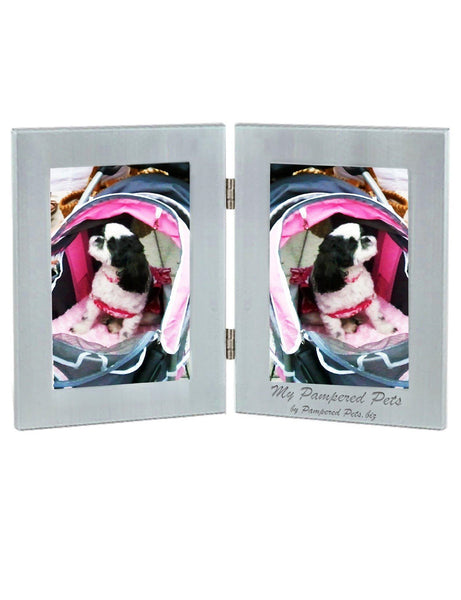 Double Pane Picture Frame in Brushed Silver