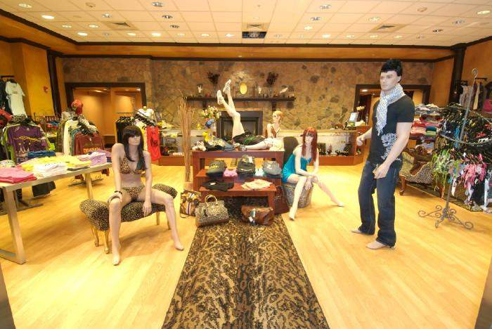 ShopAA Clothing Store Woodbury New York Business Image Photo