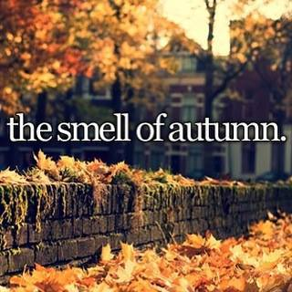 autumn - the best smelling of all the seasons