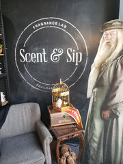harry potter photo op at scent and sip in lansdale