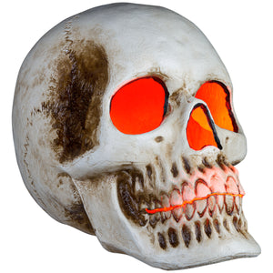"20"" Blow Mold Lighted Decor-Candle Flicker-Natural Bone Skull"