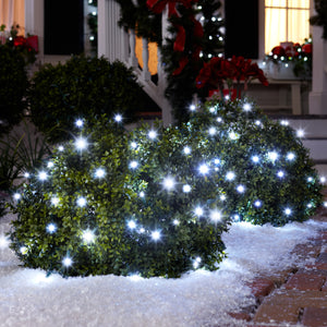 Starry Night Net Light-70 count (White)