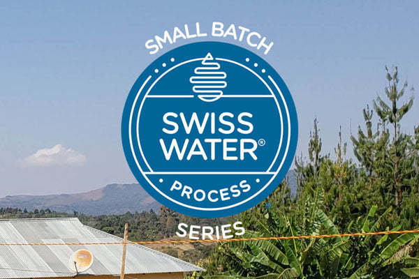Tanzania - Iloma - Swiss Water Decaffeinated