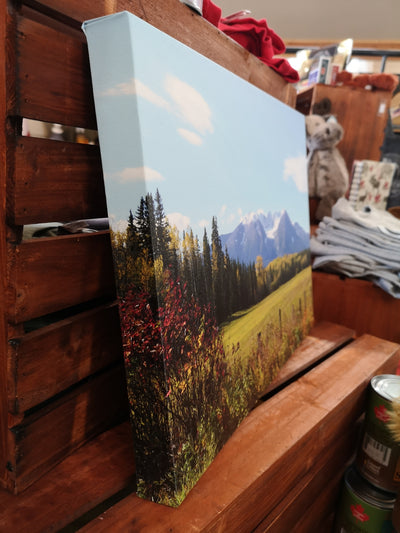 Hudson Bay Mountain- Canvas Picture