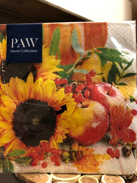 PAW Decor Collection - Sun Flowers-20 Pack