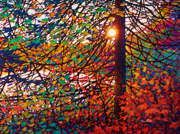 "Morning Light, Brent Road 36"" by 48"""