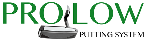 Pro Low Putting System