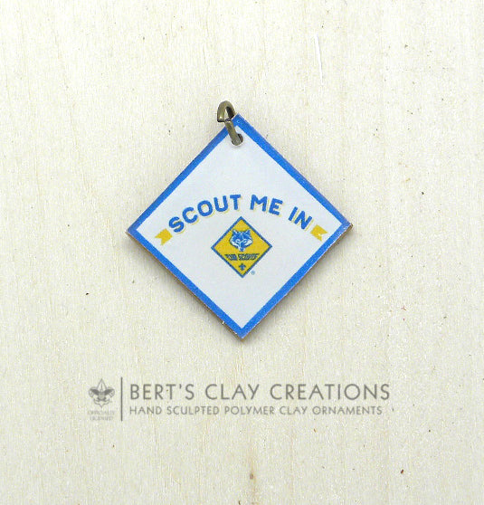 BSA Scout Me In Cub Charm