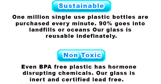 Sustainable, Non-Toxic, Clean Taste