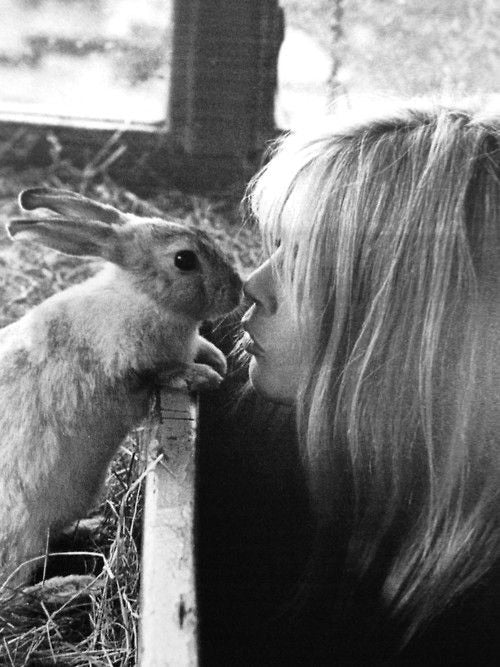 Brigitte Bardot Kissing a rabbit