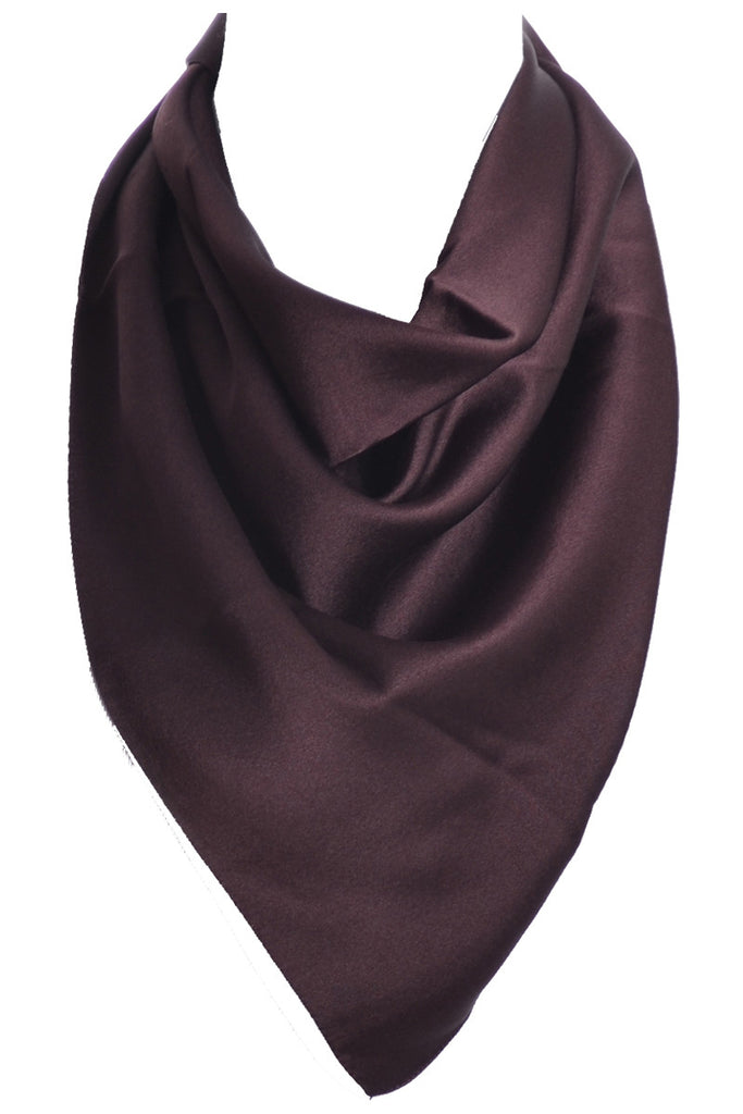 Brown Celine silk scarf