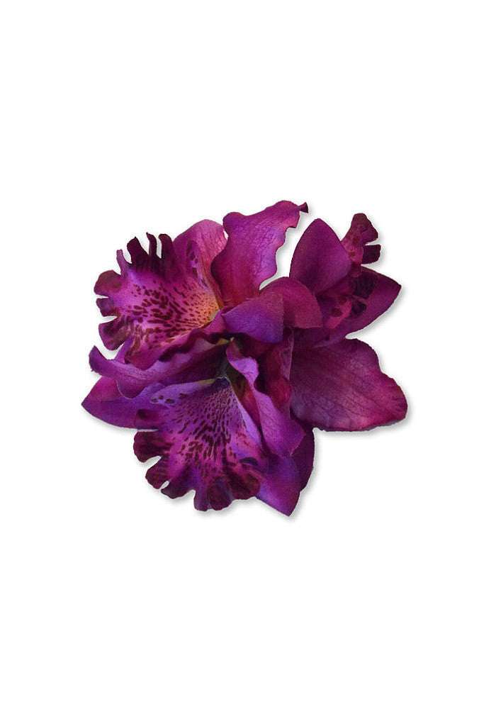 Tropical Trio Orchid, Purple