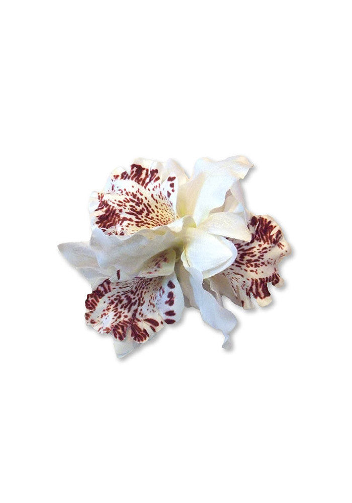 Tropical Trio Orchid, White
