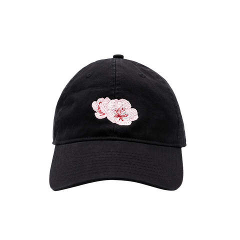 Festival Tour Dad Hat