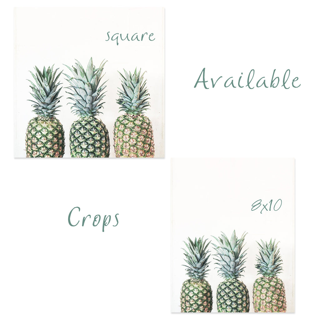 3 P's- Pineapple Photograph - Kelly*N Photography - 3