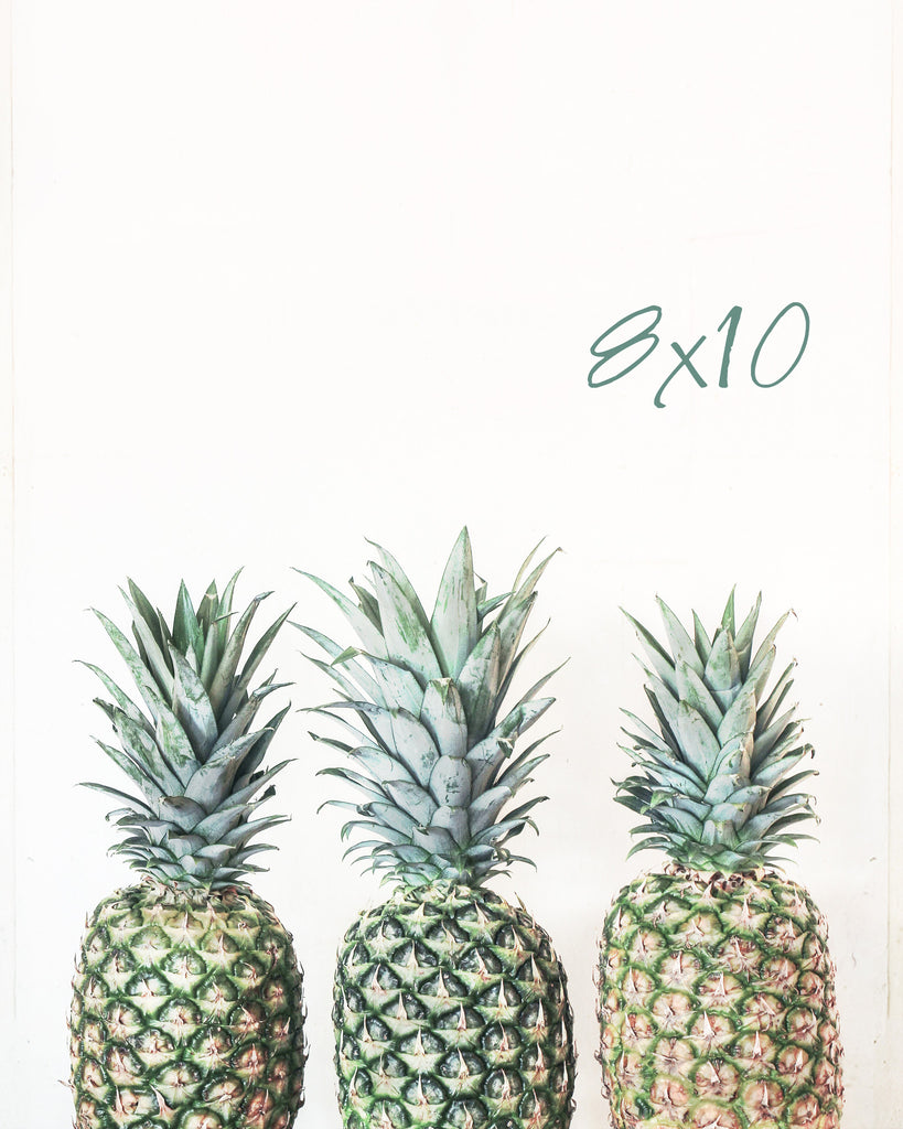 3 P's- Pineapple Photograph - Kelly*N Photography - 4