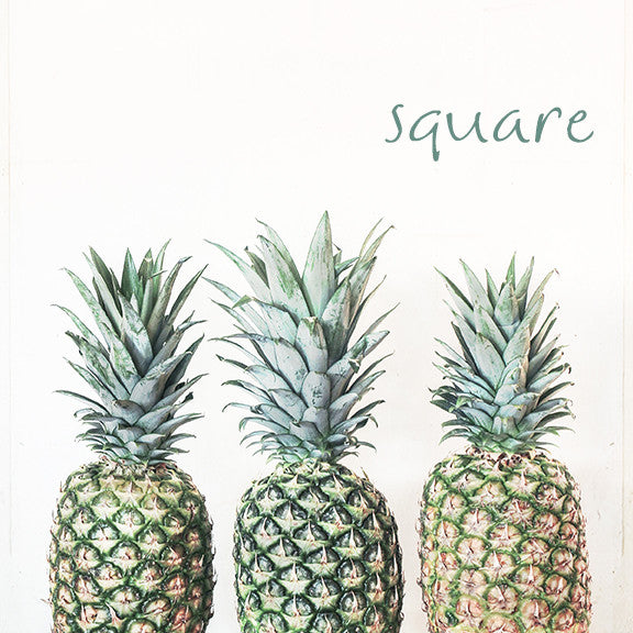 3 P's- Pineapple Photograph - Kelly*N Photography - 5