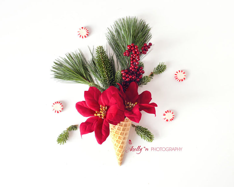 Christmas Cone - Floral Still Life