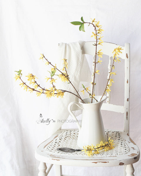 Forsythia Chair - Floral Still Life