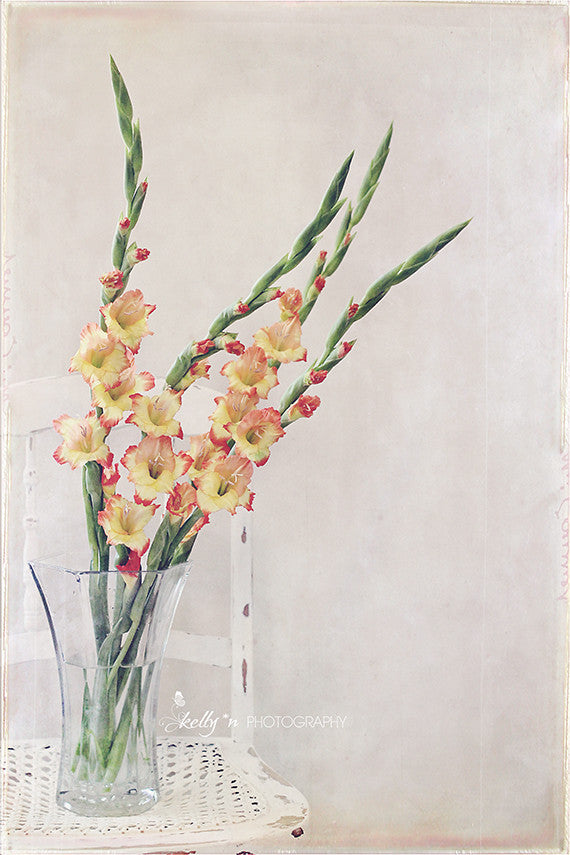 Gladiolus Chair- Floral Still Life Photo - Kelly*N Photography - 1