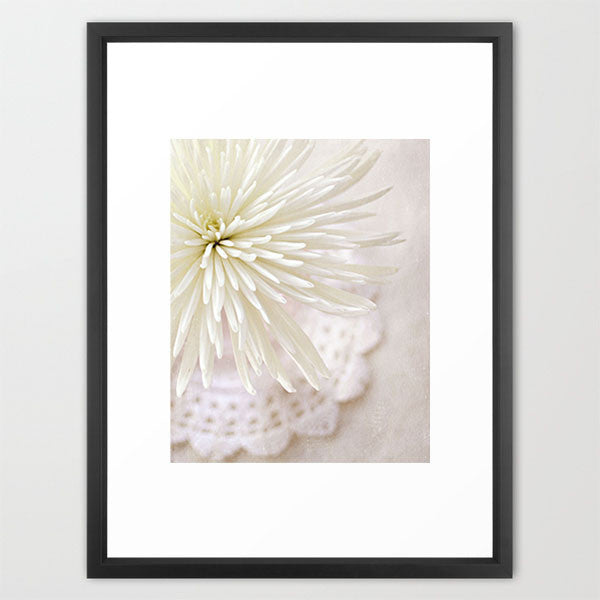 LP White Mum- Floral Still Life Photo - Kelly*N Photography - 3